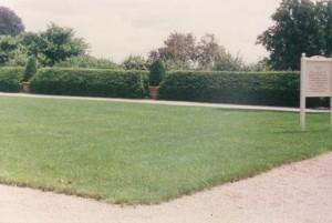 Formal Garden Hedge
